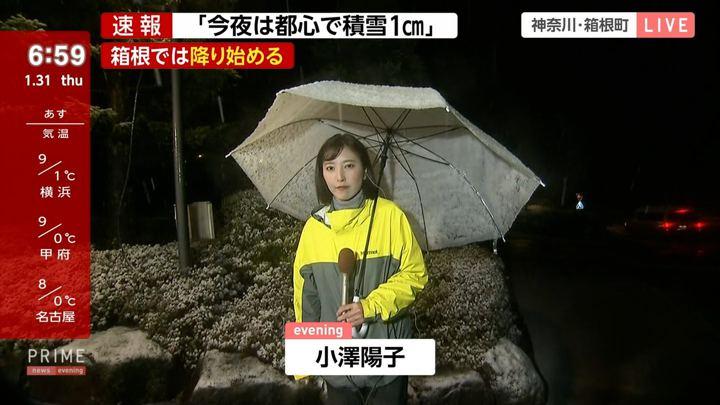 2019年01月31日小澤陽子の画像10枚目