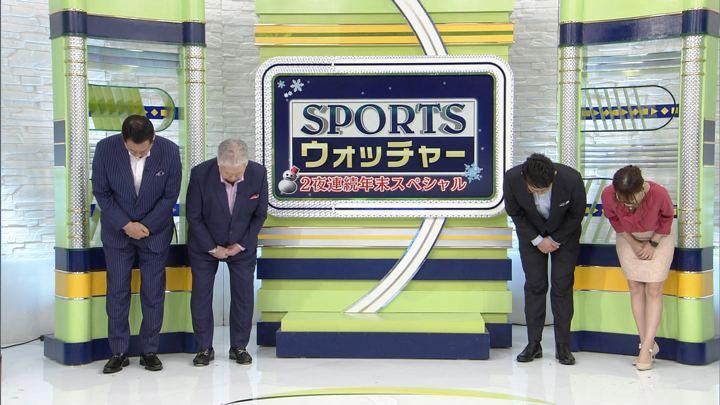 2018年12月22日鷲見玲奈の画像09枚目