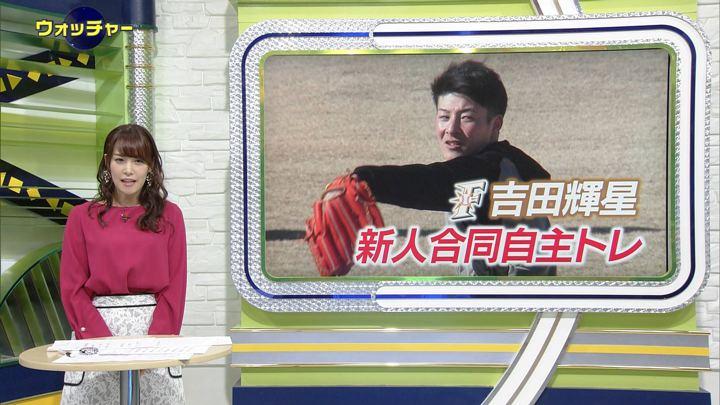 2019年01月09日鷲見玲奈の画像04枚目
