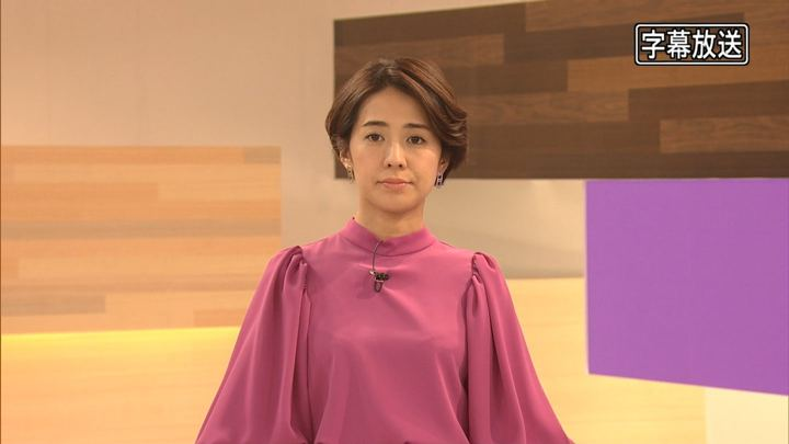 椿原慶子 プライムニュースα (2019年01月09日放送 22枚)