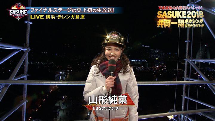 山形純菜 SASUKE あさチャン! (2018年12月31日,2019年01月07日放送 18枚)