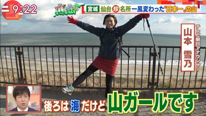 2019年02月01日山本雪乃の画像02枚目