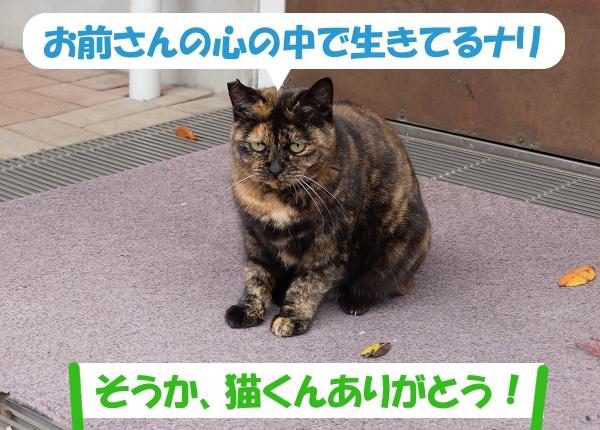 お前さんの心の中で生きてるナリ「そうか、猫くんありがとう!」