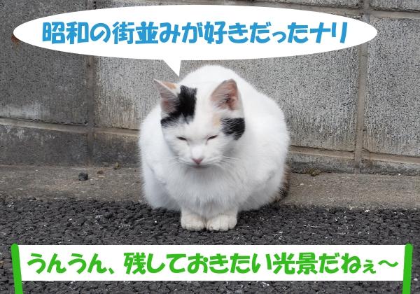 昭和の街並みが好きだったナリ  「うんうん、残しておきたい光景だねぇ~」