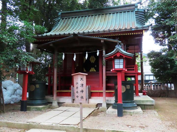 天津神社-658