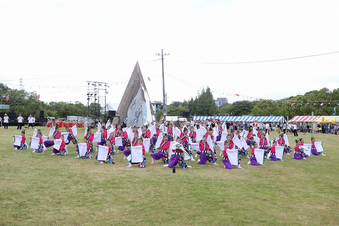 neyamatsu18sakura 65