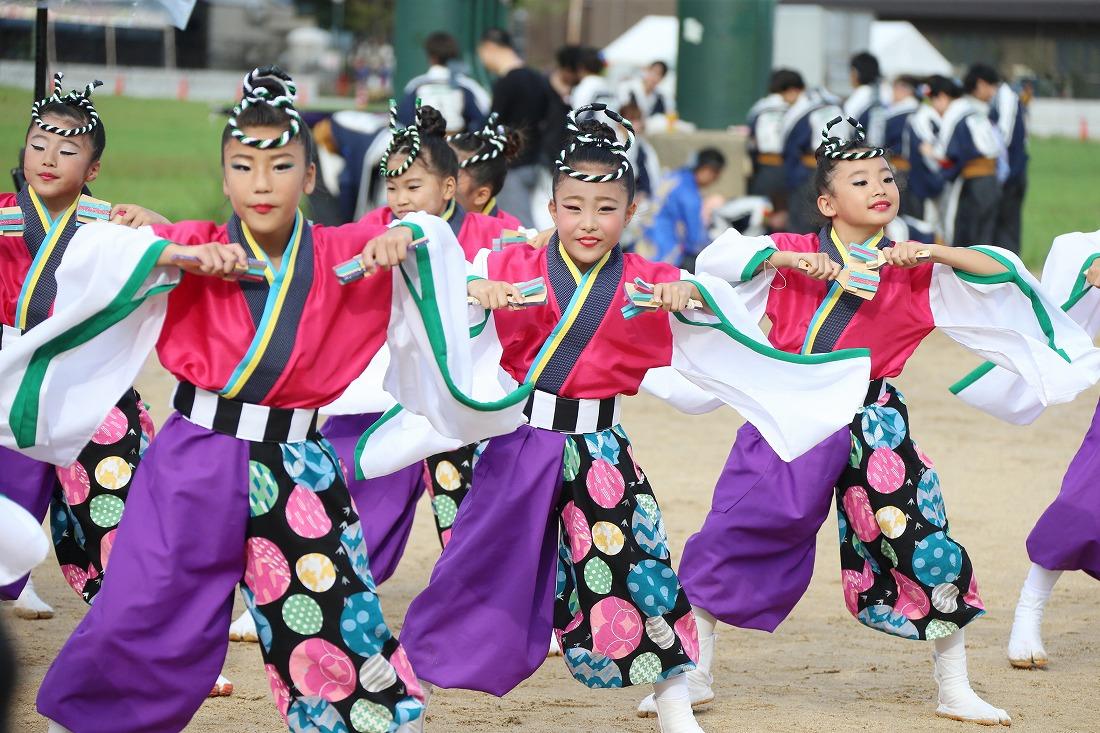 koiya181yagurasakura 12