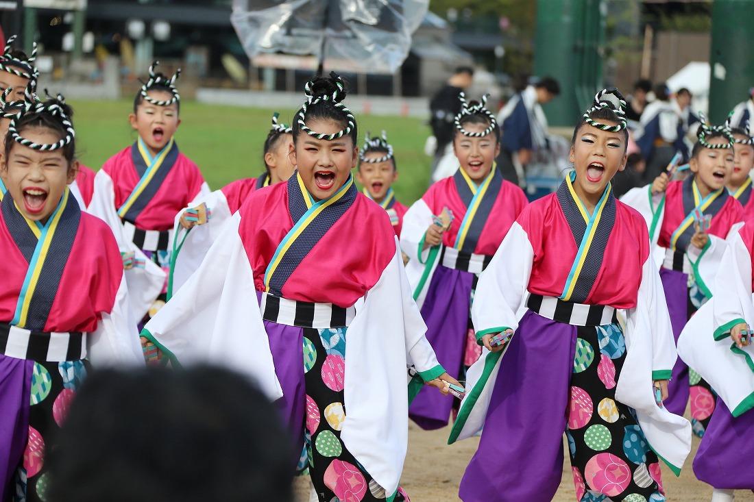 koiya181yagurasakura 13