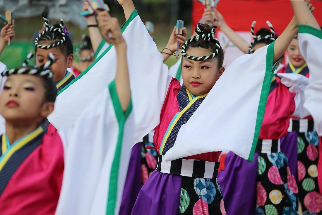 koiya181yagurasakura 14