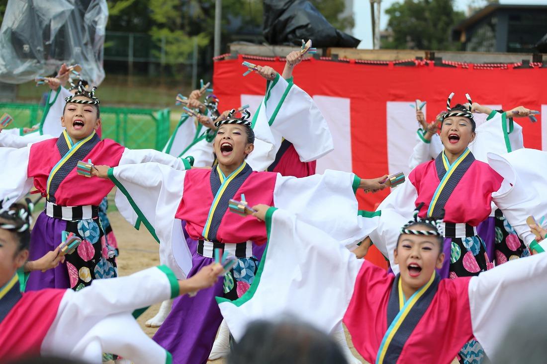 koiya181yagurasakura 23
