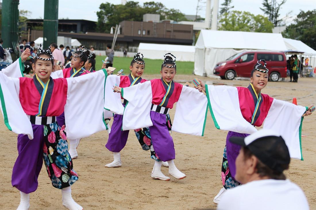 koiya181yagurasakura 28