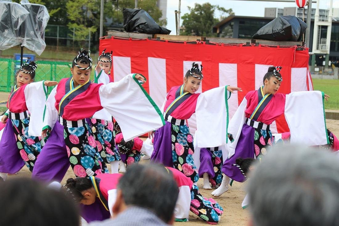 koiya181yagurasakura 33
