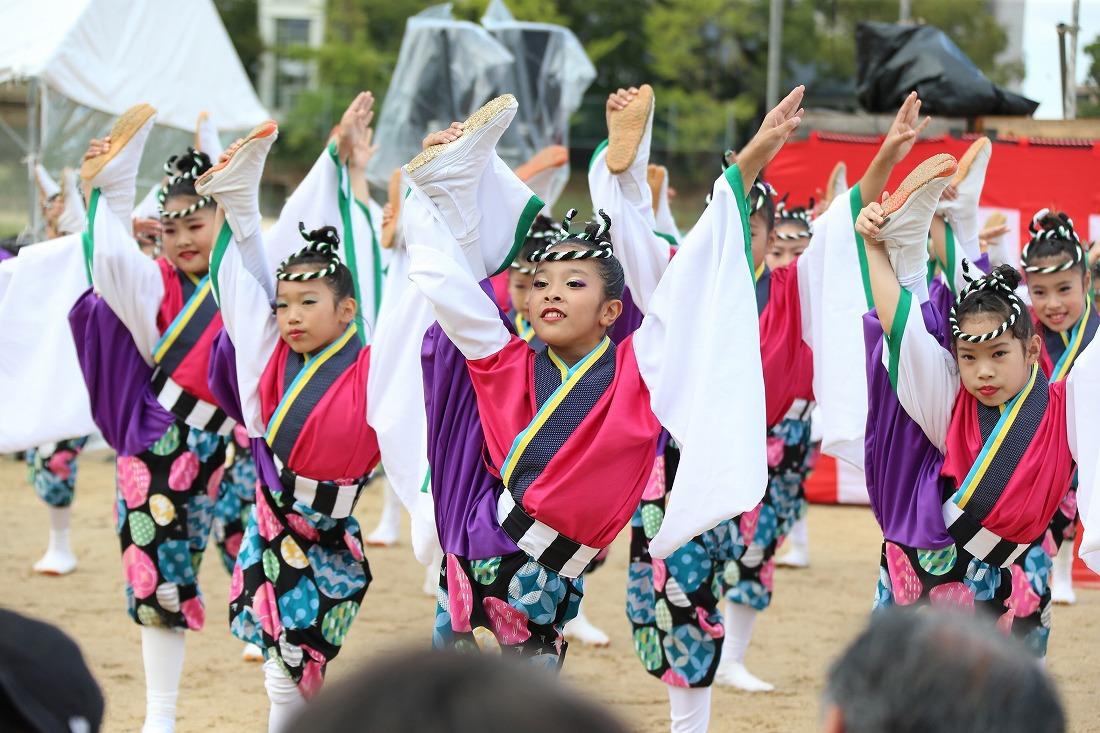 koiya181yagurasakura 34