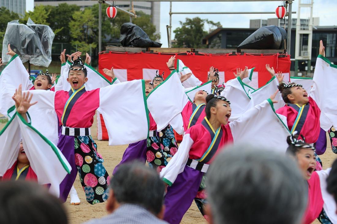 koiya181yagurasakura 39