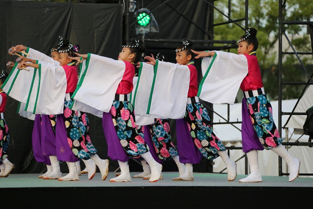 koiya181mainsakura 7