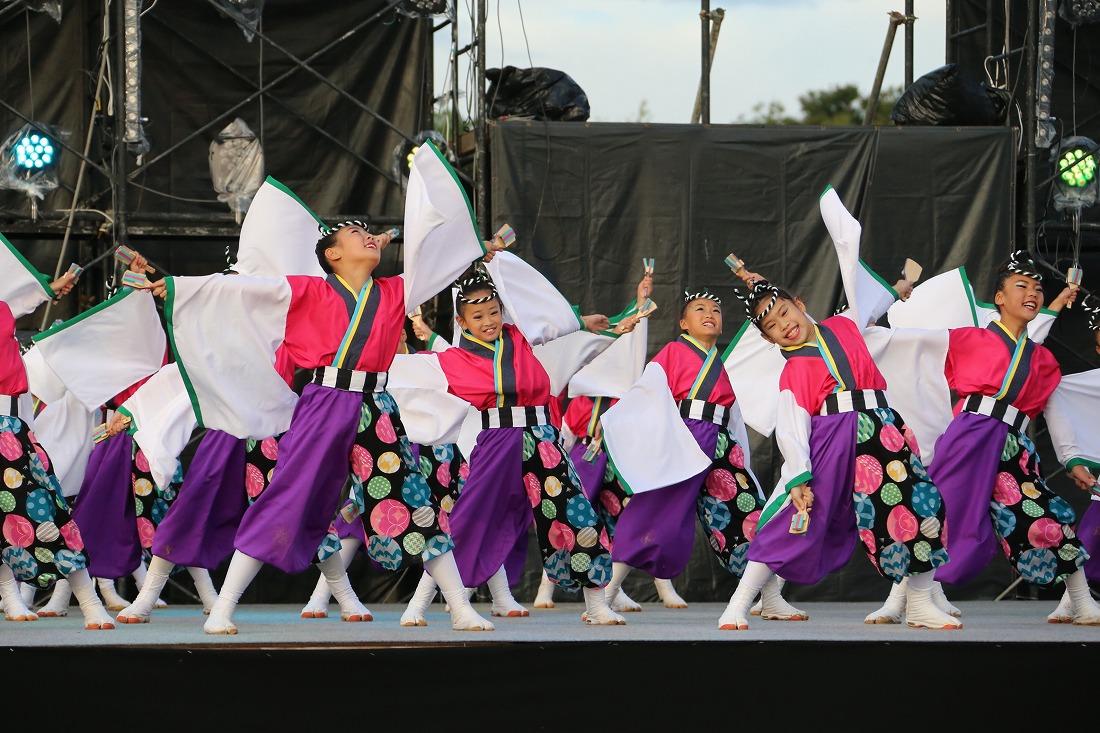 koiya181mainsakura 18