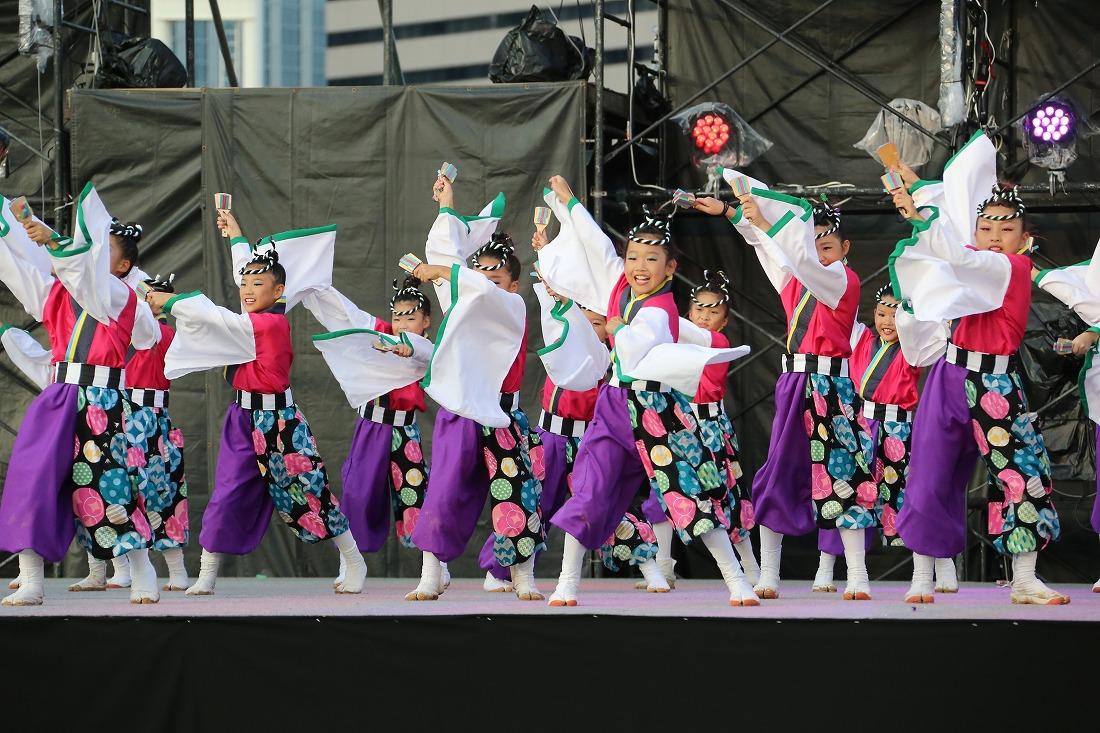 koiya181mainsakura 24