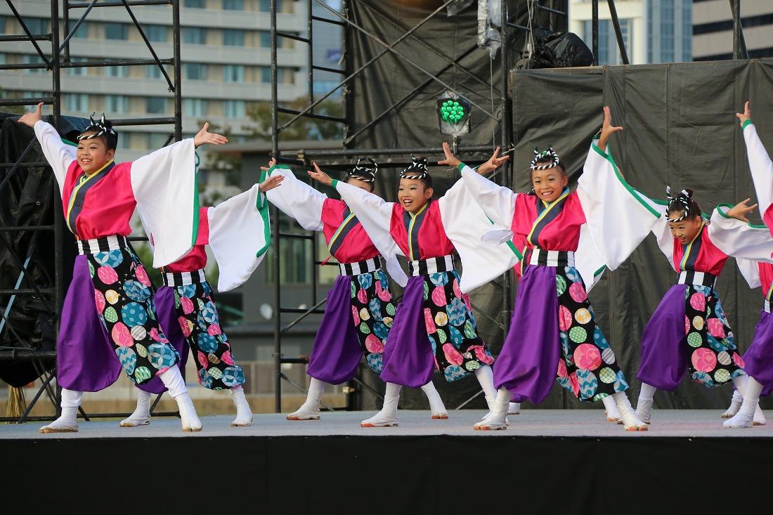 koiya181mainsakura 48