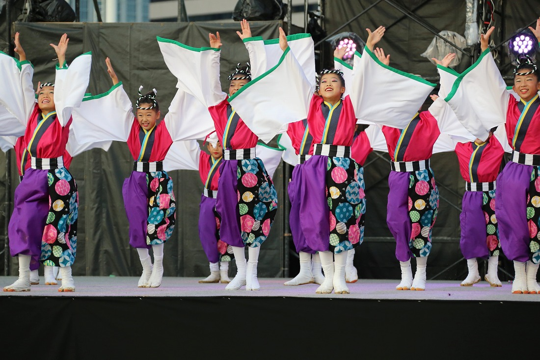 koiya181mainsakura 50