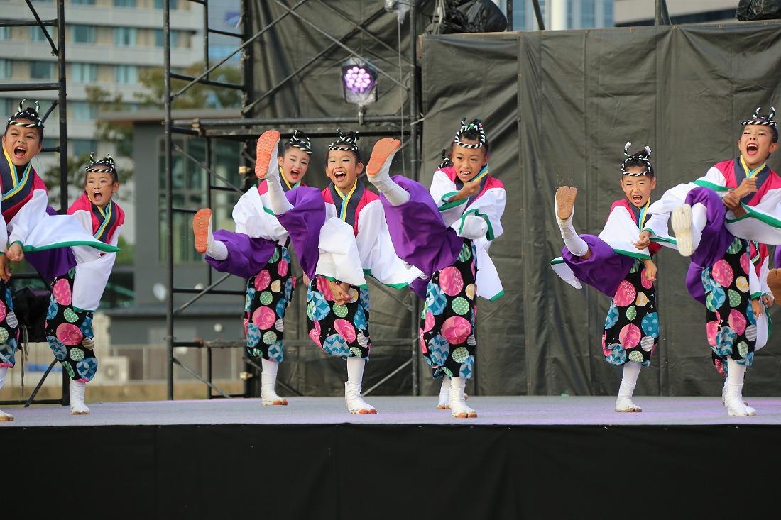 koiya181mainsakura 51