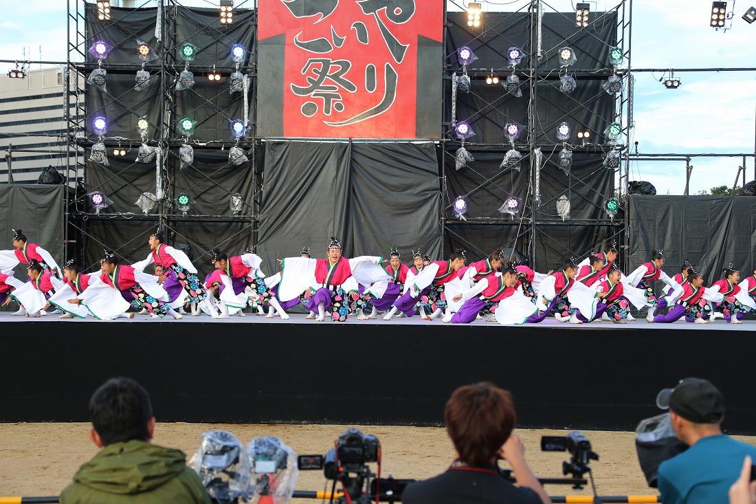 koiya181mainsakura 55