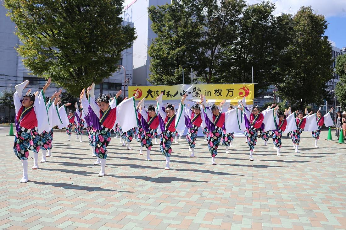 mecya18sakurahira 39