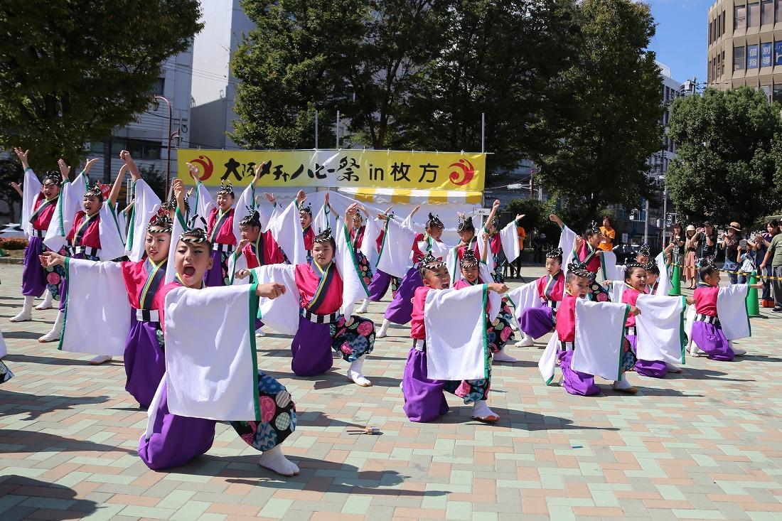 mecya18sakurahira 53