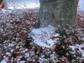 012蜘蛛の巣に雪