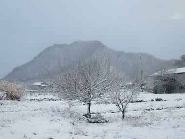 018雪景色