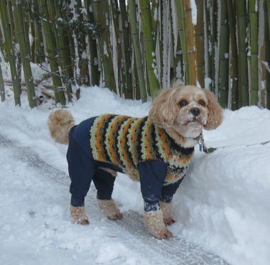 013雪散歩