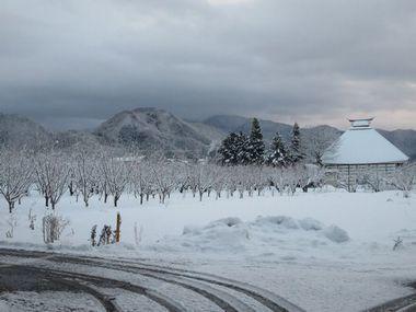 010雪道散歩