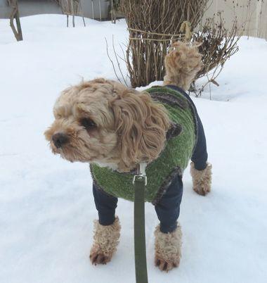 008氷点下散歩