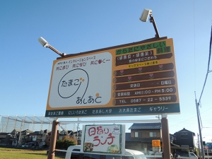 DSCN6138.jpg