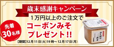 bnr_miso_sp.jpg