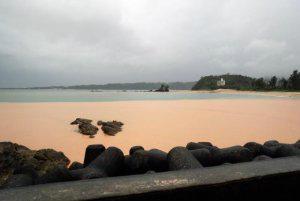 海が泣いている名護・大浦湾が赤土で染まるPICKH20160614_A0027000100500003_l