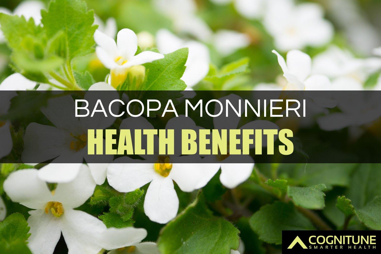 bacopa-benefits-main.jpg