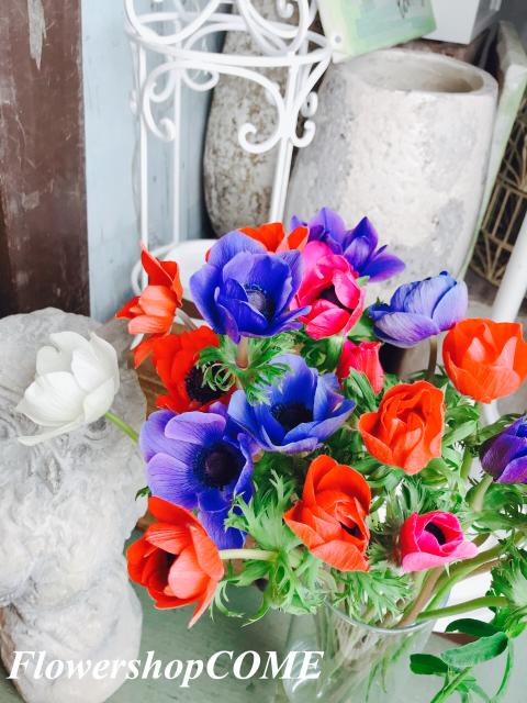 春 花見 かわいい アネモネ カラフル 花瓶 おしゃれ インテリア