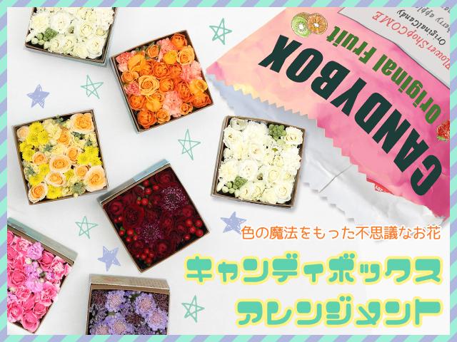 卒業祝い 入学祝い 花 サプライズ 誕生日 お祝 アレンジ キャンディ