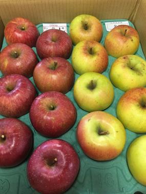 食欲の秋 リンゴ 信洲 豊川 御津 花屋 花夢