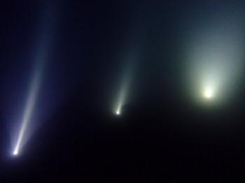 ライトトラップ
