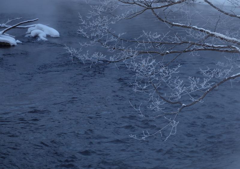 8765 霧氷