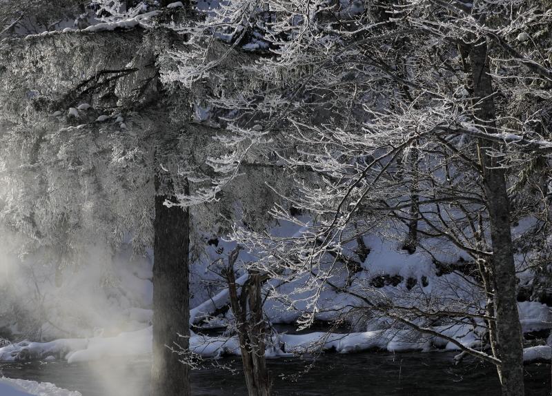 9015 霧氷