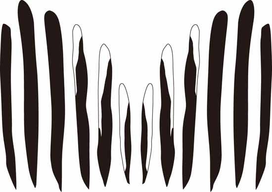 エナガの尾羽-2