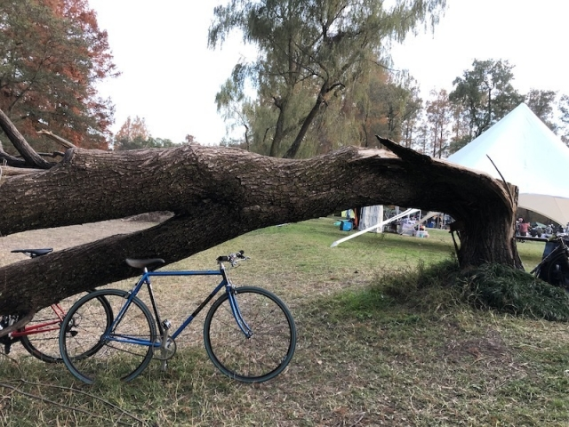 promiyata_bikelore.jpeg