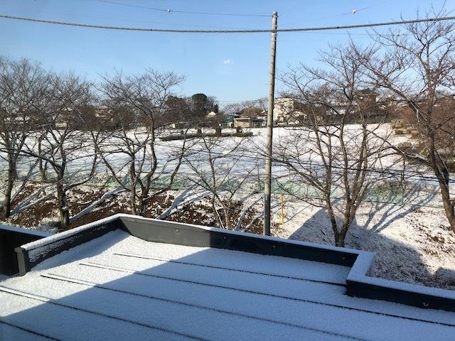 snow_park.jpeg