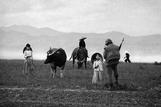 ライタイハンの告白:「性犯罪されたときに軍服を見ました。韓国の白馬部隊だった」