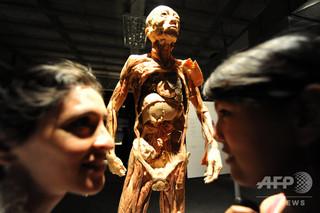 ホンジュラスの首都テグシガルパで開催された、解剖学者グンター・フォン・ハーゲンス氏による人体標本の展示(2012年11月8日撮影、資料写真)。