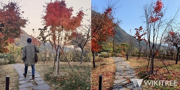 ■韓国のユンドンジュ詩人記念館