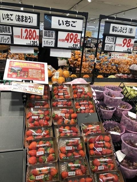 イオンが品種盗作韓国イチゴ販売!「韓国で長年をかけて品種改良を進めた、厳選されたいちごです」