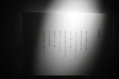 中平美紗子10